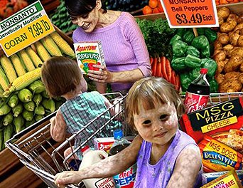 Dumbing Down Society Part I: Foods, Beverages and Meds