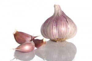 Dumbing Down Society: How to Reverse its Effects  garlic e1279750152465