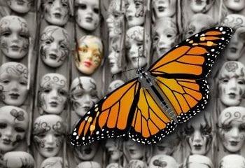leadmonarch 1 Origins and Techniques of Monarch Mind Control