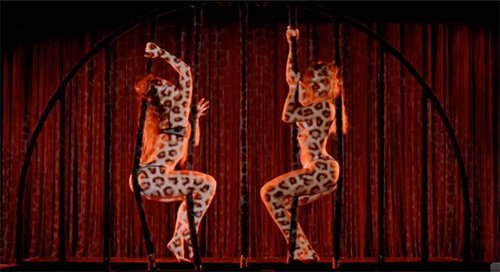 In this scene of the video Partition, two Beyoncé's dance sensually behind cage bars while completely covered in feline print.