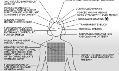Origins and Techniques of Monarch Mind Control - The