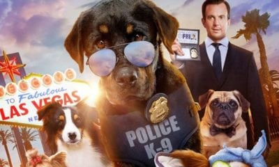 "The Movie ""Show Dogs"" Contains Scenes That ""Groom Children for Sexual Abuse"""