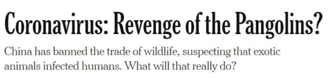 "2020 04 10 09 24 56 Opinion Coronavirus Revenge of the Pangolins The New York Times e1586528498572 ""Order Out of Chaos"": How the Elite's Plans Were Foretold in Popular Culture"